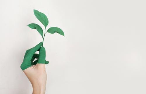 Mere bæredygtig energi kan være startskuddet på den grønne omstilling i din bolig