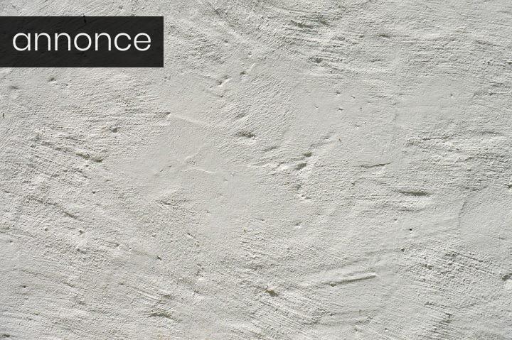 Guide: Forskellene på fire slags facadepuds